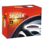 Spider 06-600×600